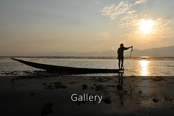 homepage_thumbs_gallery